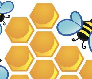 Dessin abeilles