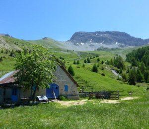 cabane des mulets 2